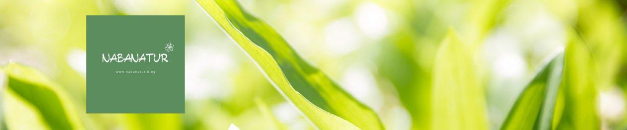 Nabanatur |   Kräuterkurse – Online Kurse – Bachblüten